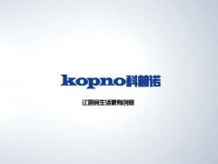 科普诺电器企业宣传片 (101播放)