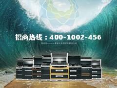 蓝享集成灶企业宣传片 (162播放)