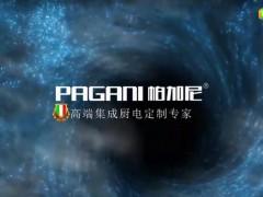 帕加尼企业宣传短视频 (95播放)