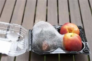 邦的集成灶提醒你夏季厨房卫生你重视了吗?