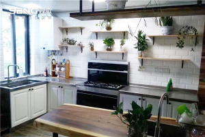 这么优秀的森歌厨房电器,你确定你的厨房也来一台吗?